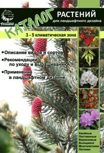 oblozhka kataloga