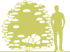7-kalina-gordovina-viburnum-lantana-aureum-siluet.png