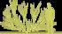 6-rakitnik-cytisus-hollandiasiluet.png