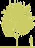 2-sliva-rastopyrennaya-prunus-cerasifera-nigra.png