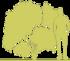 8-krushina-lomkaya-zhoster-frangula-alnus-aspleniifolia-siluet.png