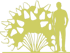 8-gortenziya-metelchataya-hydrangea-paniculata-grandiflora-siluet.png
