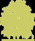 11-klen-serebristyy-acer-saccharinum-laciniatum-wieri.png