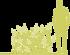 7-gortenziya-metelchataya-hydrangea-paniculata-darts-little-dot-darido-siluet.png