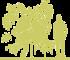 4-grab-obyknovennyy-carpinus-betulus-foliis-argenteovariegatis-pendula-siluet.png