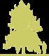 12-klen-serebristyy-acer-saccharinum-pyramidale.png