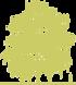 1-bereza-borodavchataya-povislaya-betula-pendula-siluet.png
