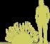 1-lavanda-uzkolistnaya-lavandula-angustifolia-siluet.png