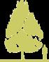 8-grab-obyknovennyy-carpinus-betulus-variegata-siluet.png