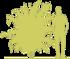 8-dejciya-shershavaya-deutzia-scabra-plena-siluet.png