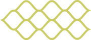 Георешетка лого