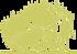 8-siluet-kashtan-konskiy-melkotsvetkovyy-aesculus-parviflora-1.png